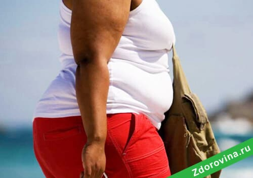 Тренировки в домашних условиях для девушек для похудения